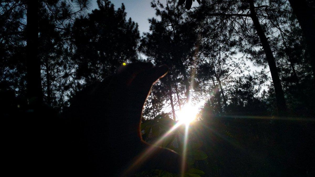 Sebuah Cahaya